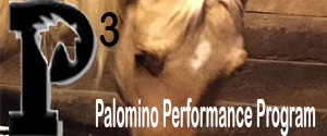 Palomino Performance Program